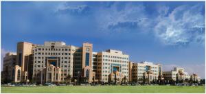 Συνεργασία του ΠΕΔιΣ με το Αμερικάνικο Πανεπιστήμιο των Ηνωμένων Αραβικών Εμιράτων (AUE)